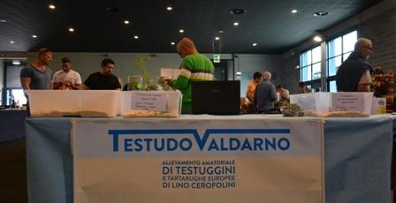 Foto fiera di Arezzo 4